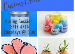Curious Creations Spring Session (Tuesdays, 3/17-4/14: 5 weeks) 5:30-6:15pm